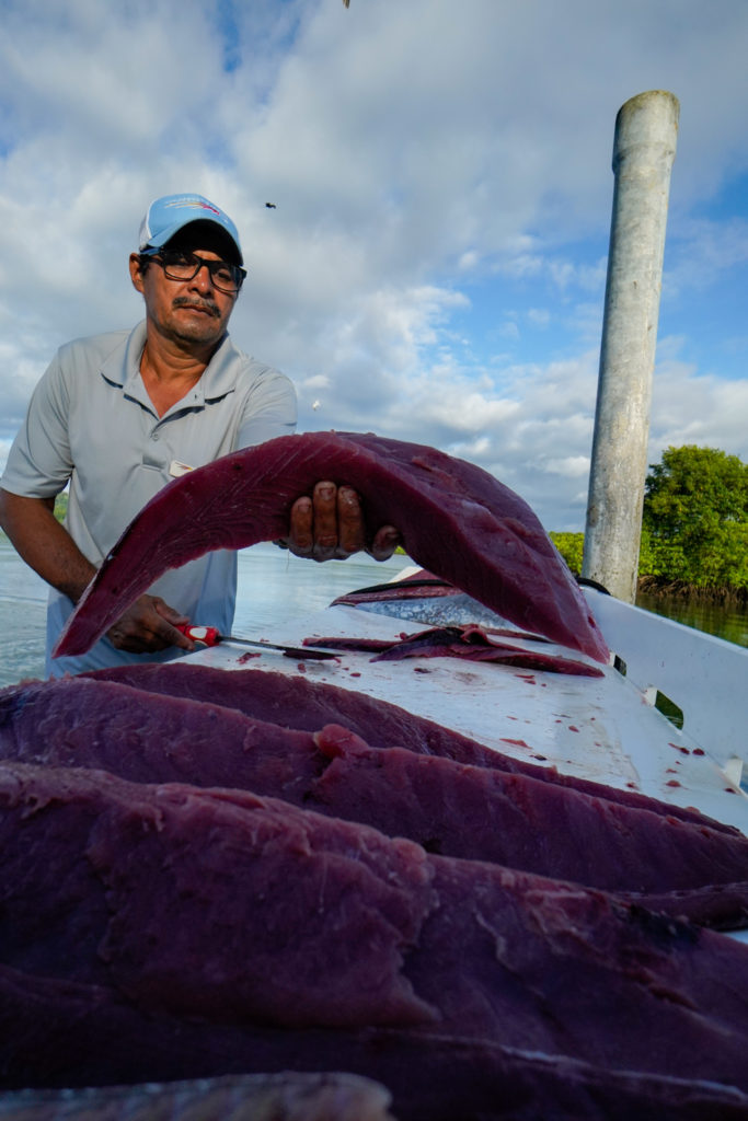 Yellowfin tuna fillets in Costa Rica