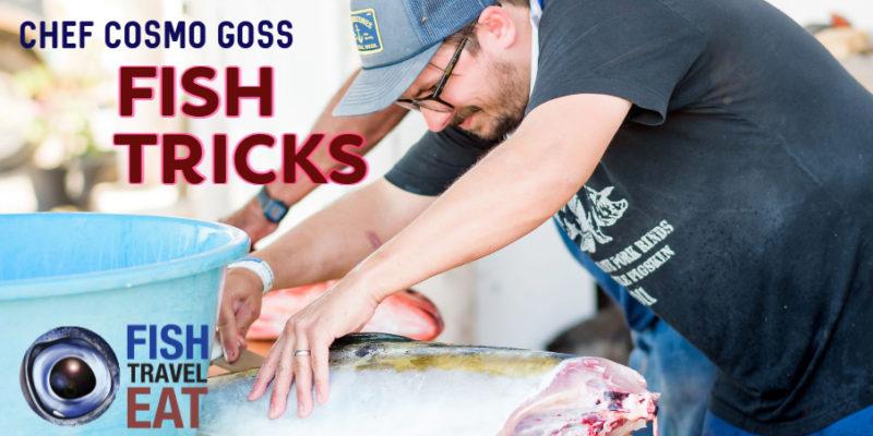 Chef Cosmo Goss preparing fish